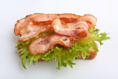 Hot sandwich with fried bacon and lettuce Stock Photography