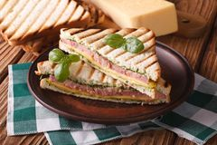 Hot sandwich with ham, cheese closeup on plate. horizontal Royalty Free Stock Photos
