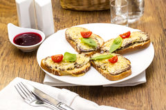 Hot sandwiches Stock Images