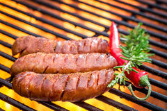 Hot sausage on the grill Stock Image