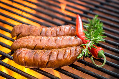 Hot sausage on the grill with fire Royalty Free Stock Image