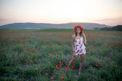 Young pretty woman in poppy fields royalty free stock photo