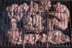 Hot shish kebab of a bottom to the nature Royalty Free Stock Images