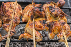 Hot skewer roasting chicken on Grilled rack Royalty Free Stock Photo