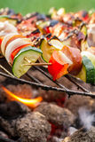 Hot skewers on the grill with fire Royalty Free Stock Image