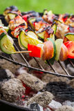 Hot skewers on the grill with fire Stock Photos