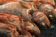 Hot smoked fish trout Stock Photography
