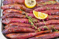 Hot smoked red mullet royalty free stock photography