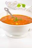 Hot soup Royalty Free Stock Photos