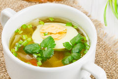Hot soup with boiled Royalty Free Stock Images