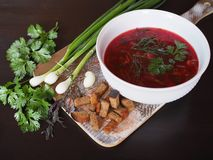 Hot soup borsch with green onions and garlic. stock images