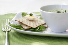 Hot soup and crackers Royalty Free Stock Image