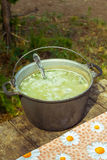 Picnic in the forest. Hot soup in a saucepan is on a table in the woods. The wooden table is covered with a colored table-cloth. Summer day, sunny. From the pot Stock Images