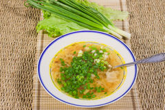 Hot soup with  spring onions. On a decorative napkin Royalty Free Stock Image