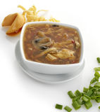 Hot and Sour Soup Royalty Free Stock Photo