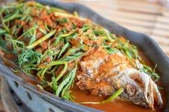 Hot and sour soup sea bass selective focus royalty free stock photos