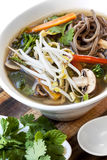 Hot and Sour Vegetable Soup with Soba Noodles and Bean Sprouts. Garnished with mint and coriander or cilantro Stock Photography