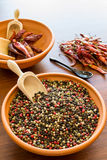 Hot spices. Pepper and red hot chilli peppers royalty free stock photo