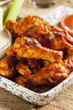 Hot and Spicey Buffalo Chicken Wings. With celery Royalty Free Stock Photos