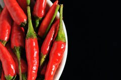 Hot and Spicy 3 Stock Photography