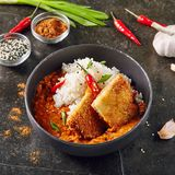 Hot Spicy Crispy Fried Chicken Fillet with Curry and Rice on Dar. K Background. Katsu or Tonkatsu with Red Peppres, Turkey Meat Cutlet in Breadcrumbs, Tomatoes stock photos