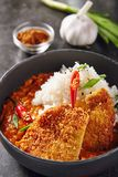 Hot Spicy Crispy Fried Pork Fillet with Curry and Rice on Dark B. Ackground. Katsu or Tonkatsu with Red Peppres, Meat Cutlet in Breadcrumbs, Tomatoes, Chilli royalty free stock image