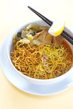 Hot and spicy Curry Noodle Royalty Free Stock Photography
