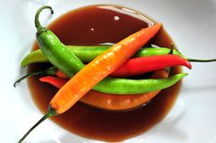 Hot spicy red peppers for spicy condimentation hot food Royalty Free Stock Image
