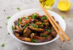 Hot spicy stew eggplant in Korean style with green onion. stock image