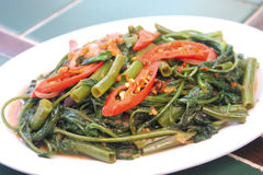 Hot Spicy Stir fried kangkong malay stlye. Spicy stir fried kangkong vegetarian. Healthy diet vegetarian meal Stock Image