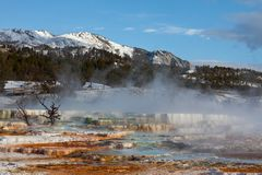 Hot spring Royalty Free Stock Image