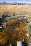 Hot Spring. Natural Hot Spring in the Long Valley Caldera near Mammoth Lakes California Stock Image