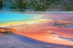 Hot Spring. Bacteria are developing bright colors in hot spring Royalty Free Stock Images