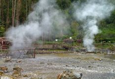 Hot spring at the Azores Royalty Free Stock Photo