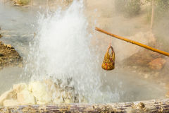 Hot spring. Eggs in the basket at the  Pai hot springs,Mae Hong Son,Thailand Stock Images