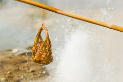 Hot spring. Eggs boiled in the hot springs at Mae Hong Son,Thailand Stock Image
