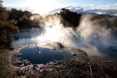 Hot spring in Kuirau Park Royalty Free Stock Photos