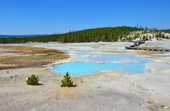Hot spring in Yellowstone, Wyoming Royalty Free Stock Photos