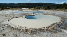 Hot spring at Yellowstone Royalty Free Stock Photo