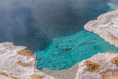 Hot Spring in Yellowstone. Morning Glory Pool in Yellowstone National Park of Wyoming royalty free stock photos