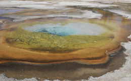 Hot spring, Yellowstone Stock Images