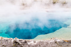Hot Spring. A hot spring in Yellowstone National Park royalty free stock photography