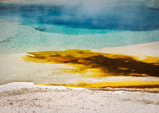 Hot spring, Yellowstone national park Royalty Free Stock Photography
