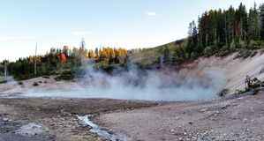 Hot Spring. Yellowstone National Park,  where hot springs are steaming up everywhere Royalty Free Stock Image
