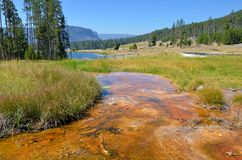 Hot spring in Yellowstone, Wyoming Stock Images