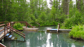 Hot Springs. People taking a tip in Liard River Hot Springs Provincial Park stock photography