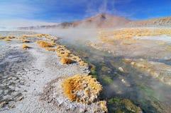 Hot springs in the Atacama desert, Bolivia. royalty free stock photo