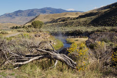 Hot Springs for Bathing in Yellowstone Park. Horizontal image of natural hot springs, for bathing, near Garner River in northern part of Yellowstone National Stock Photography
