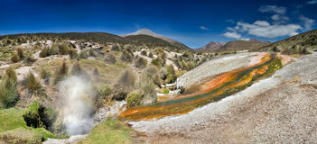 Hot springs in Bolivia Stock Image