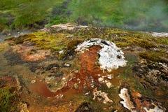 Hot Springs dal nära Hveragerdi som bubblar termiskt vatten, Island Royaltyfri Fotografi